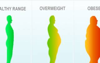 BMI not a correct measure of health: study