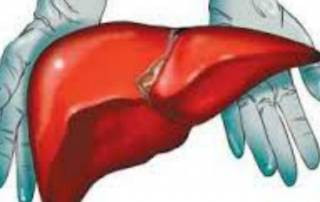 Too much salt may cause liver damage: study