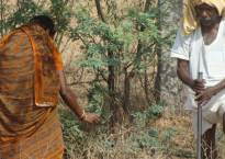 Swaraj Abhiyan, CSE demands use of MGNREGA funds for water conservation