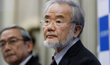 Who is Nobel medicine prize winner Yoshinori Ohsumi?