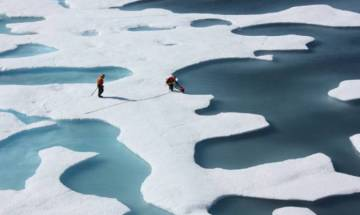 North Pole is 36 degrees hotter than normal temperature