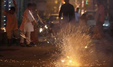 National Green Tribunal asks states to issue guidelines, create awareness on firecrackers to counter pollutions