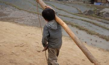Child labour: 6,920 employers prosecuted between 2014-16