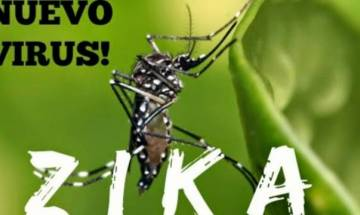 Zika threat in India: WHO report confirms 3 cases were detected in Ahmedabad in January, govt says no need to panic