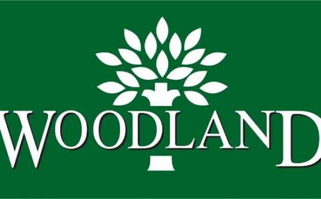 Woodland - File Photo