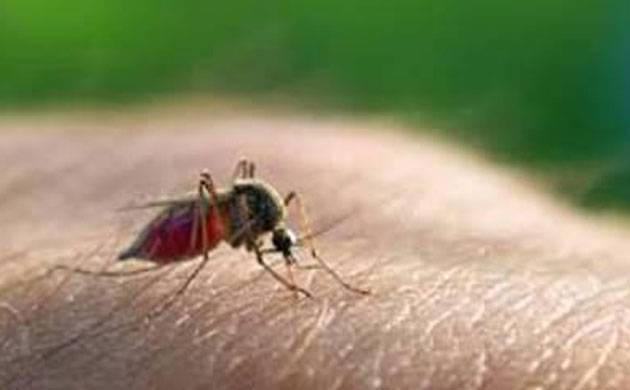 Malaria cases cross 200 mark in Delhi; cases of chikungunya and dengue also in the rise