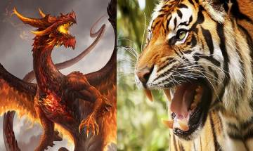 In a Dragon vs Tiger faceoff, who holds the edge? Indian military's strength check