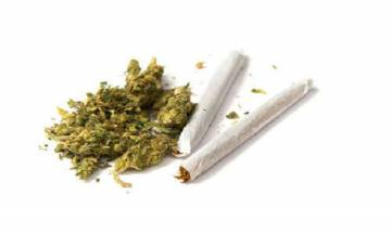 Marijuana is more dangerous than cigarettes; triple death risk from hypertension