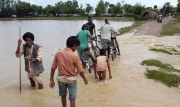 Nepal: 200 Indian tourists stranded due to floods in Chitwan town