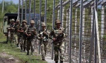 J&K: Ceasefire violation by Pakistan in Poonch sector along LoC, 2 jawans injured