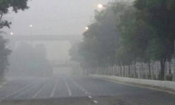 NGT lambasts Arvind Kejriwal led government for Delhi's deadly smog, orders construction and industrial activities to be halted