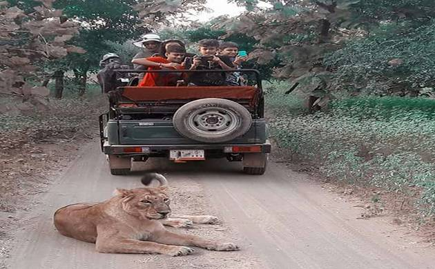 Environment ministry seeks improved air connectivity for Gir National Park (pic credit: Gir National Park website)