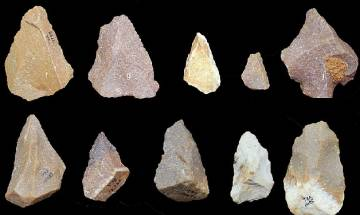 Stone Age tools recovered in India's Tamil Nadu challenge theory of human evolution from Africa