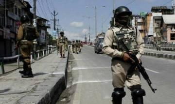Jammu and Kashmir: Militants lob grenades at Rashtriya Rifles camp in Kakapora