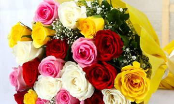 Rose Day 2018: Here's what each colour of Rose signifies