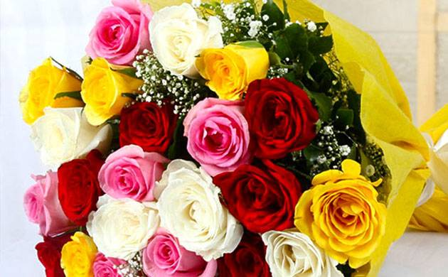 Valentine's Week 2018 | Rose Day: Here's what the colour of Rose signifies