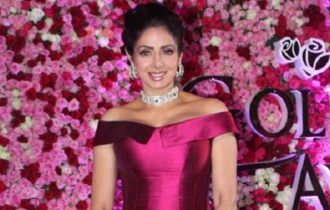 NOT Mom but THIS will be Sridevi's LAST outing on the silver screen (Source- IANS)