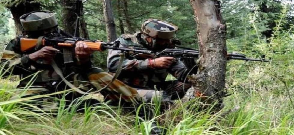 Jammu and Kashmir: Security forces gun down 4 terrorists in Kupwara (file photo)