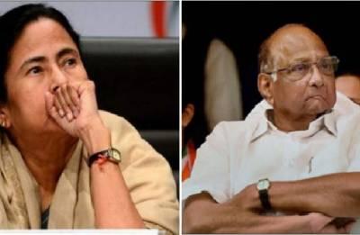 Not meeting Mamata Banerjee, says NCP Chief Sharad Pawar