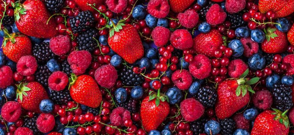 Berry pigments may help treat cancer (Source: PTI)