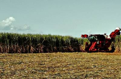 Cabinet okays Rs 8500-crore relief package for sugar industry