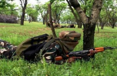 Meghalaya: NDFB militant killed in gun battle
