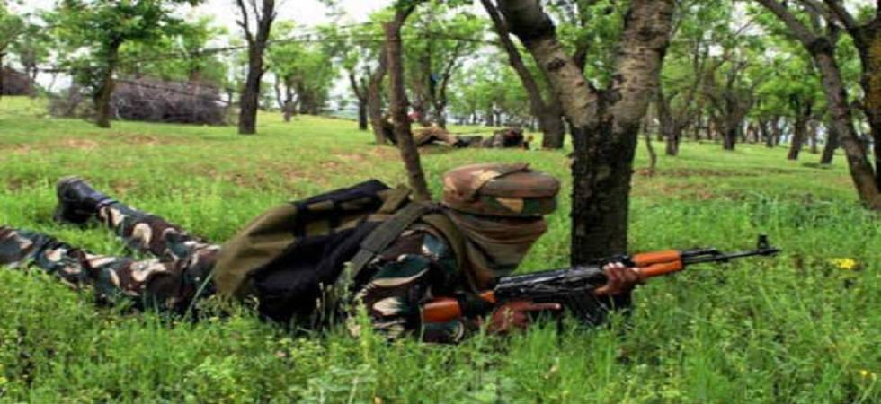 Meghalaya: NDFB militant killed in gun battle (Representational Image)