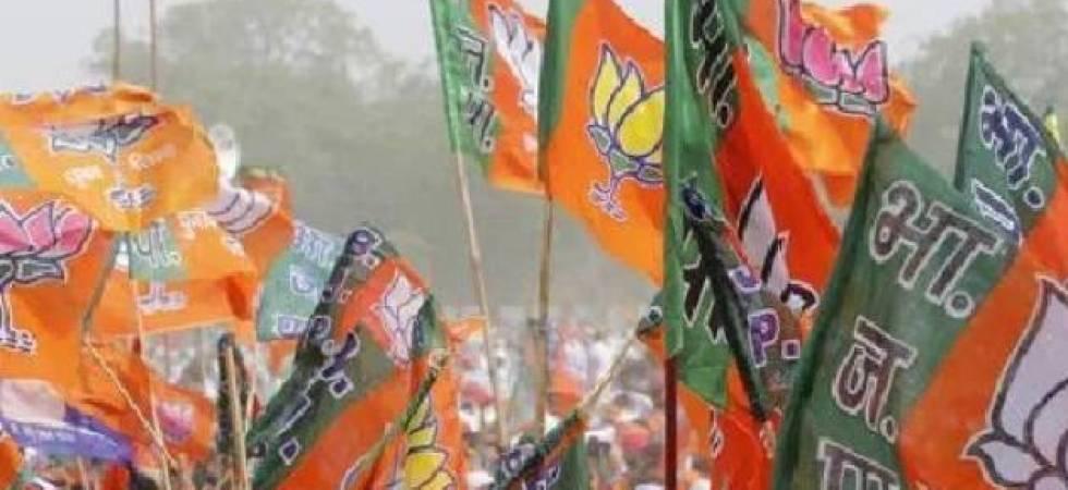 Article 35-A: BJP MLA snubs party, praises Kashmiris for defending the article (File photo)