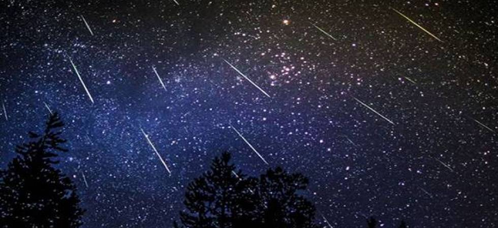 Perseids Meteor Shower in India; when and where to watch (File photo)