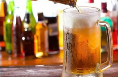 World's beer supply threatened by severe climate change