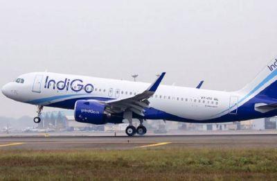 Passenger arrested for molesting female flight attendant