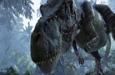 'Superlungs' gave dinosaurs energy to run and fight: Study