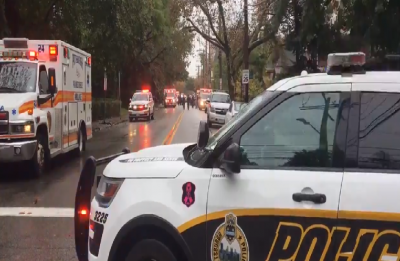 Eight killed in shooting at Pittsburgh synagogue, suspect in police custody