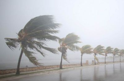 Cyclone Gaja to make landfall in Tamil Nadu today; schools, colleges to remain shut