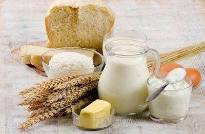 How harmful is cow milk?