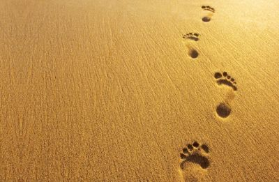 The Quiet Space: The beautiful footprints you leave behind...