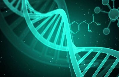 Gene research limited by lack of diversity: Oxford study