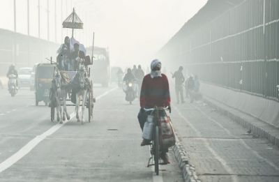 Delhi battles winter chill, light rain likely at night