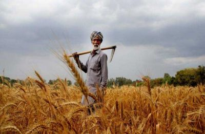 Budget 2019: Government may hike farm credit target to Rs 12 lakh crore