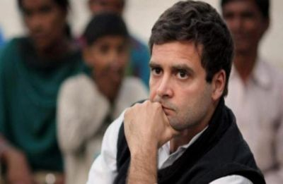 Farmers stage protest against Rahul Gandhi in Amethi, say Congress chief should go back to Italy