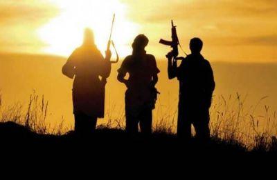 Modi govt bans Jammu and Kashmir's terror group Tehreek-ul-Mujahideen