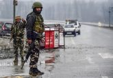 High intensity 'military grade' RDX used in Pulwama terror attack: Report