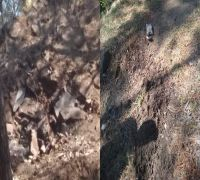 First pictures of craters formed from Pakistani bombs dropped near Indian Army post in J-K's Rajouri