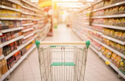 Wholesale Price Index for 'all commodities' for February 2019 rises  by 0.3% to 119.5