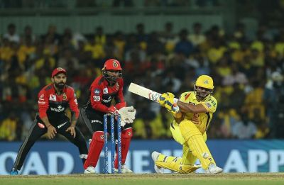 IPL 2019: Harbhajan Singh powers CSK to seven-wicket win over RCB