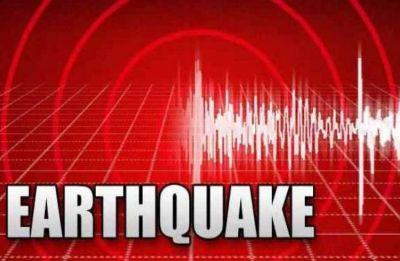 Earthquake measuring 6.8 magnitude hits off Indonesia's Sulawesi, tsunami possible