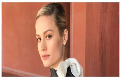 Captain Marvel star Brie Larson has most perfect response to trolls