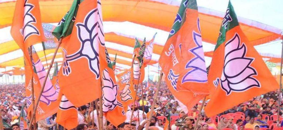Bharatiya Janata Party (Representational Image)