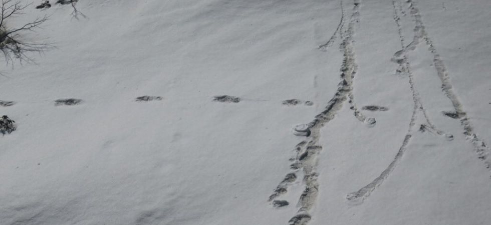 People on social media mocked the Yeti claim by Indian Army.