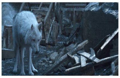 Game of Thrones director real reason why Jon Snow didn't pet Ghost goodbye